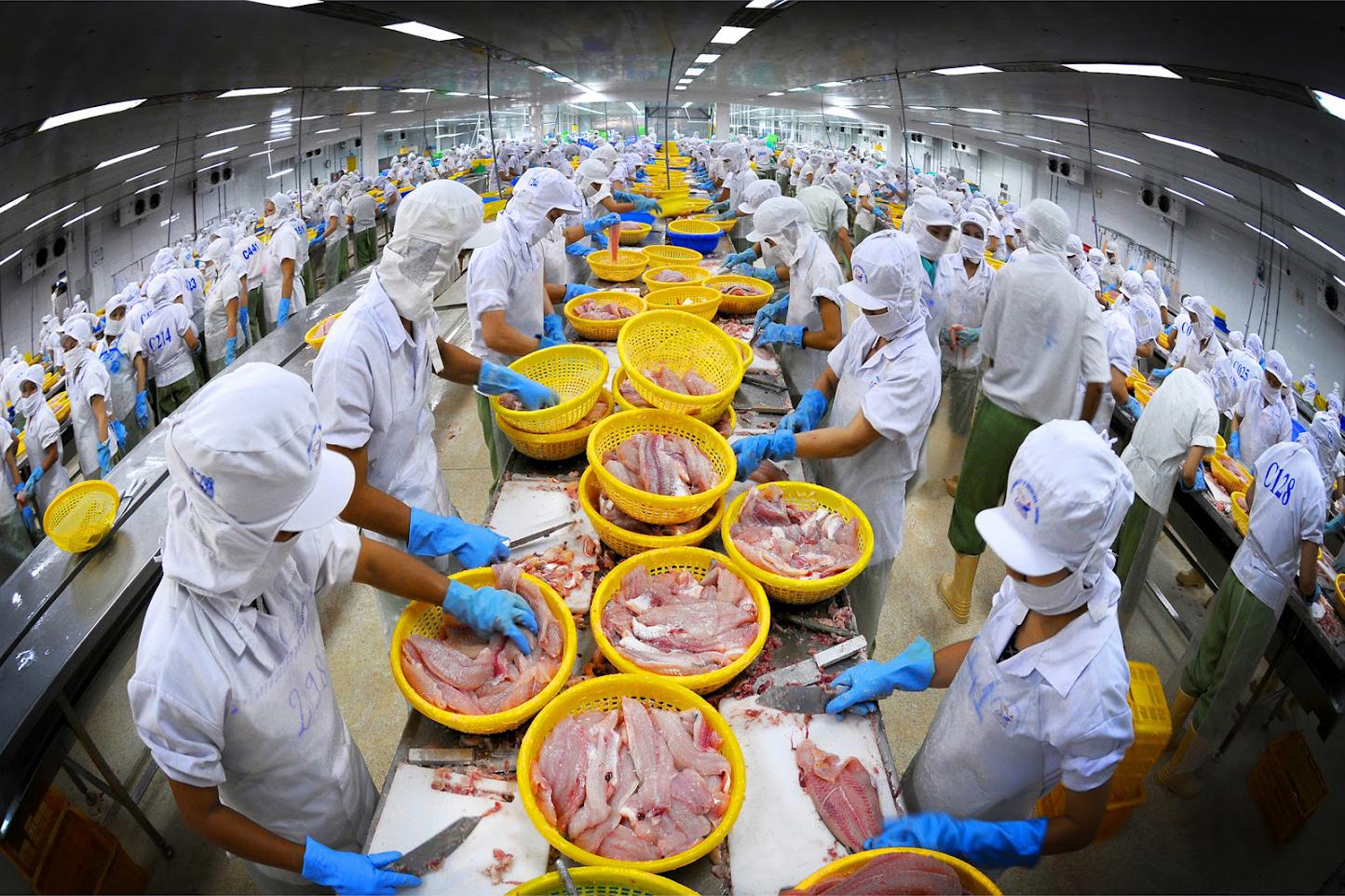 Thủy sản sẽ là ngành hưởng lợi lớn từ UKVFTA nếu khắc phục được các rào cản kỹ thuật tại thị trường Anh
