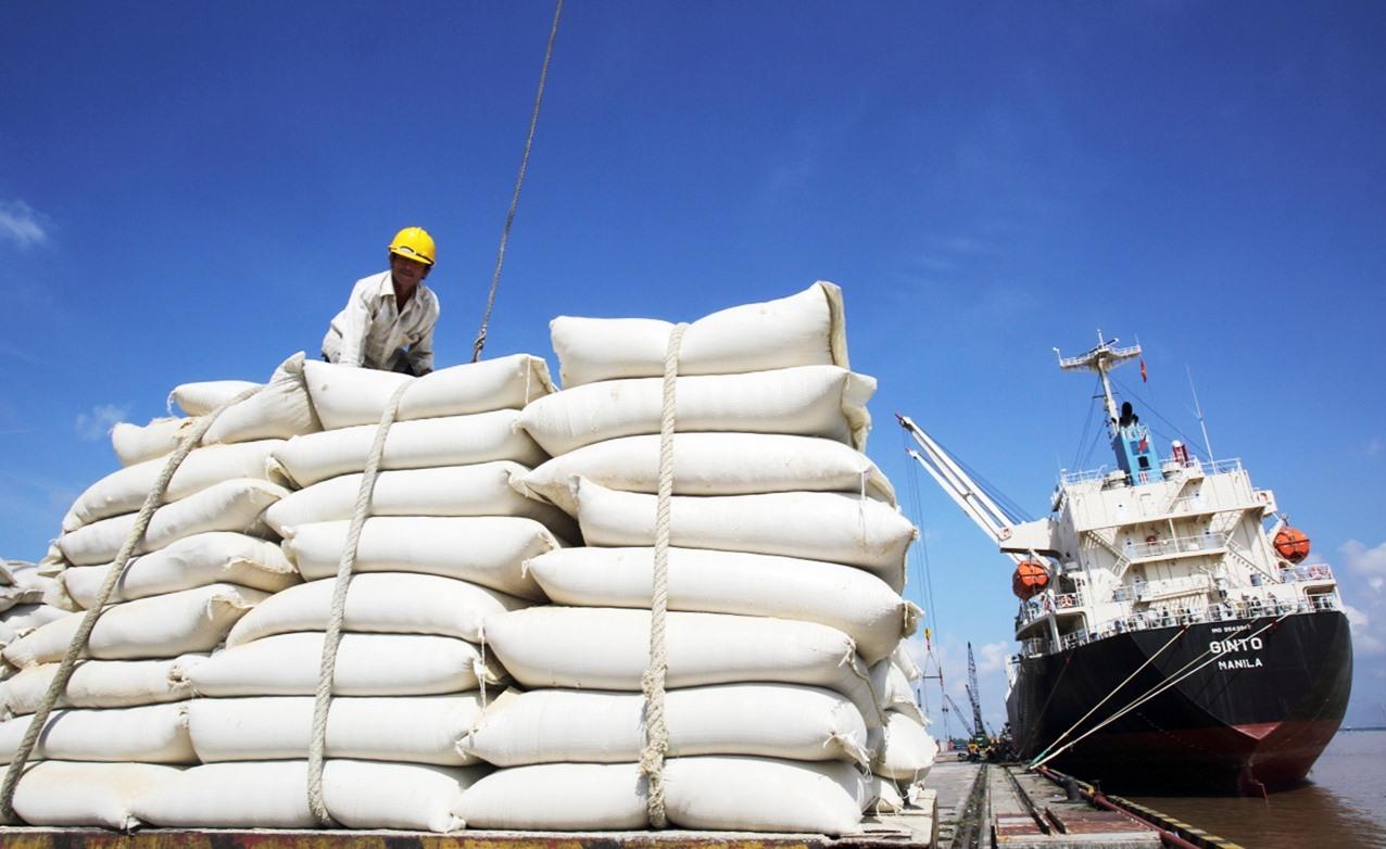 Giá gạo Việt xuất khẩu vào thị trường EU đã tăng phổ biến 80-200 USD/tấn nhờ ảnh hưởng của EVFTA