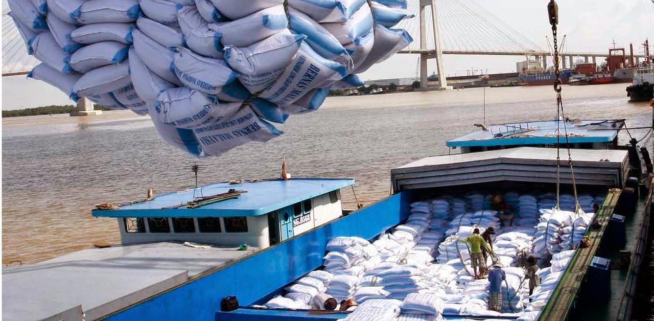 xuất khẩu gạo sang EU