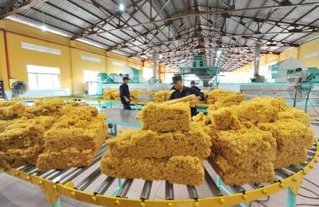 Hoa Kỳ tăng nhập khẩu cao su từ Việt Nam